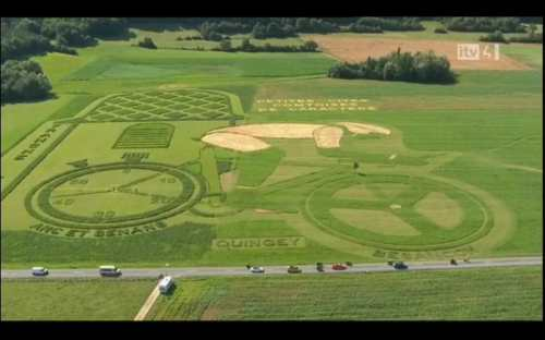 Tour de France 2012 Field Art